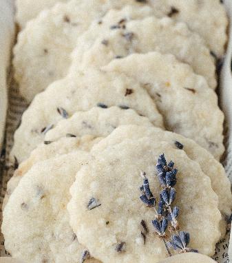 cookiesrecipes.png